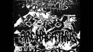 Violent Gorge - Roiling Of Indigest
