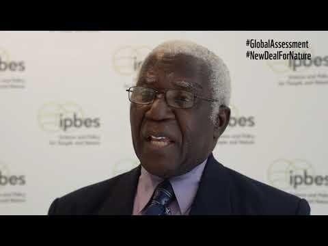 IPBES Bureau Member Alfred Oteng Yeboah on the IPBES 2019 Global Assessment