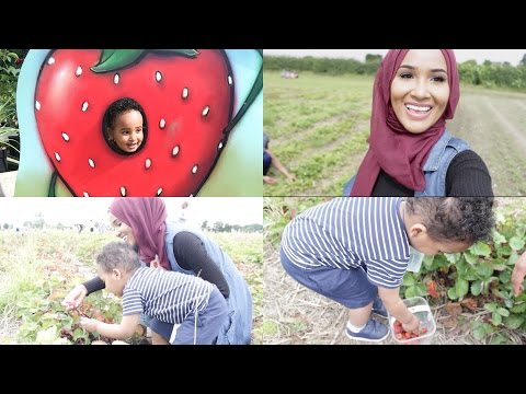 A DAY IN MY LIFE | STAWBERRY PICKING| VLOG2