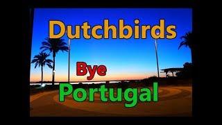 Dutchbirds   Bye Portugal   Back in Spain