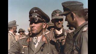 Killing Rommel  The Demise of the Desert Fox