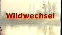 Fassbinder - Selvaggina di passo (sottotitoli in italiano)