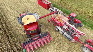 making corn cob mix   case ih 8240 axial flow dewa maalmolen   bart sprangers mais dorsen