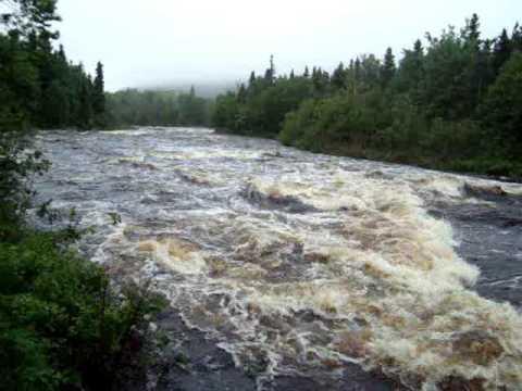 Shoal Harbour River after rain