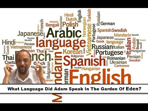 how to speak sofististic language