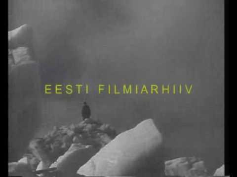 Jäämäed Virtsu rannas (1939)