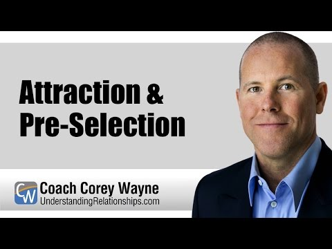 Attraction & Pre-Selection