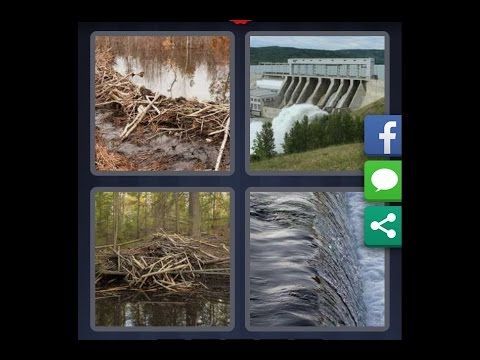 4 Images 1 Mot Niveau 461 Hd Iphone Android Ios