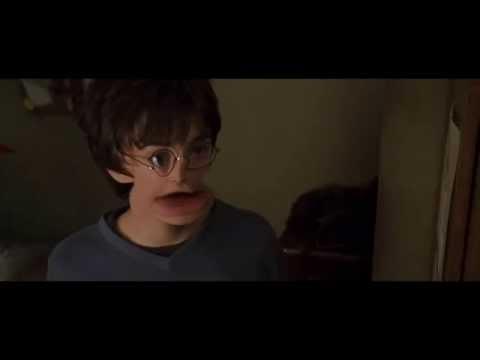 Гарри Повар. Какого дьявола ты здесь шумишь?