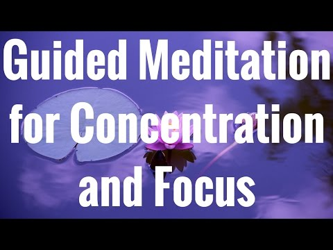 Guided Meditation for Concentration and Focus