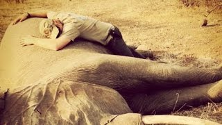 Prince Harry Shares Powerful Anti-Elephant and Rhino Poaching Message