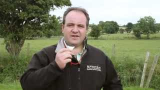How to blow a sheepdog whistle and whistle commands - thebordercollie.co.uk