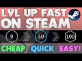 How To Level Up FAST On STEAM! (Cheap, Quick & Easy) 2017