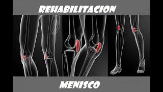 Sutura de menisco + Definición + Síntomas + Tratamiento