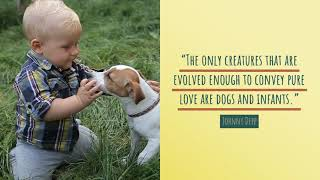 The only creatures that are evolved enough...
