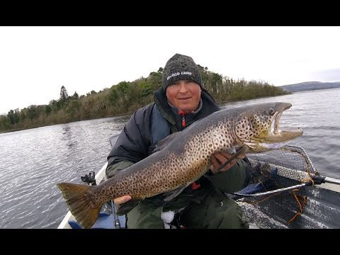 Last 6 months fishing , pictures of trout , salmon , pike . Lough corrib fishing ,
