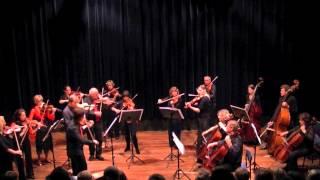 NedSym Chamber Orchestra - J.Svendsen, 2 Swedish Folksongs, op.27 (UTwente 9/2012)