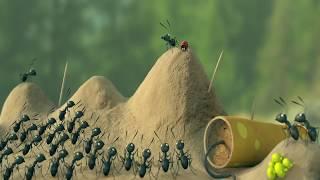 Короткометражный мультик со смыслом муравейник...