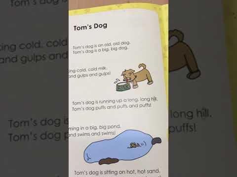 Fun Phonics Reader 1 Story 5 - Tom's Dog - fast