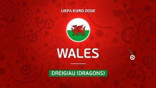 Wales at UEFA EURO 2016 in 30 seconds