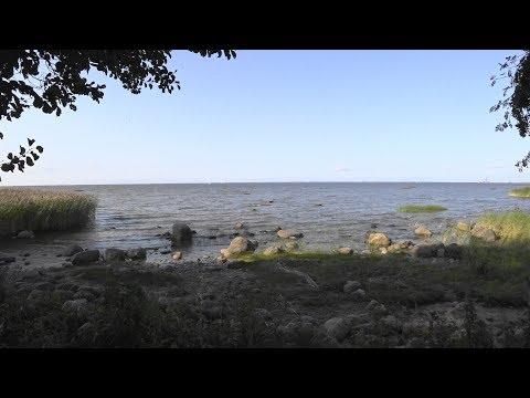 Побережье Финского Залива. Прогулка по парку Александрия в Петергофе