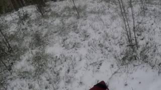 Охота на лося в Псковской области видео