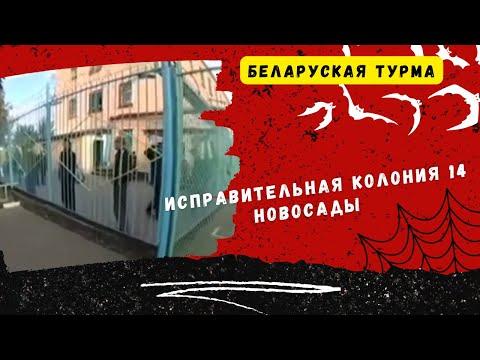 ИК-14(Новосады)