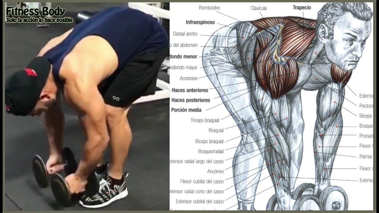 Ejercicios de deltoides posterior