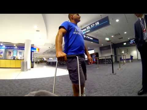 Australia: Sydney International Terminal Walkaround