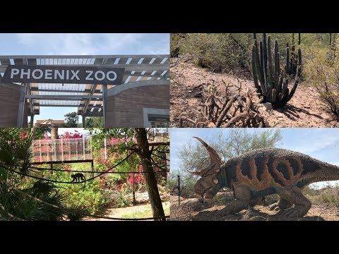 Dinosaurs at the zoo | Vlog