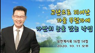 [기적의 말씀! 응답의 은혜!] 박건수목사의 쉬운원어성경 강해-계시록-고난으로 피어난 가을 무덤가에 가만히 …