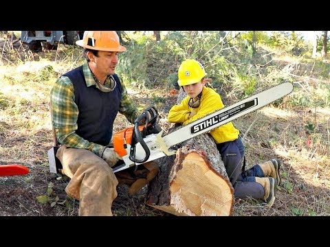 How To Work With Chainsaws