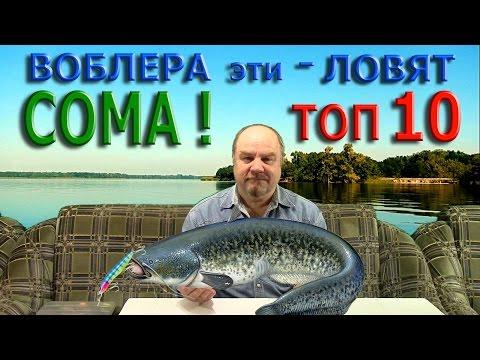 ВОБЛЕРА эти - ЛОВЯТ СОМА ! ТОП - 10