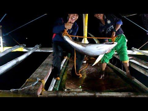 Filipino Tuna Fishing | Part 2 Of 4