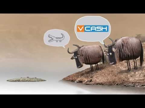 Sell services  to over  2 million loyal subscribers on VCASH  network