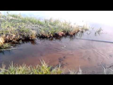 Russian fishing stories/Kalamehe jutud DEBIIILI ERI