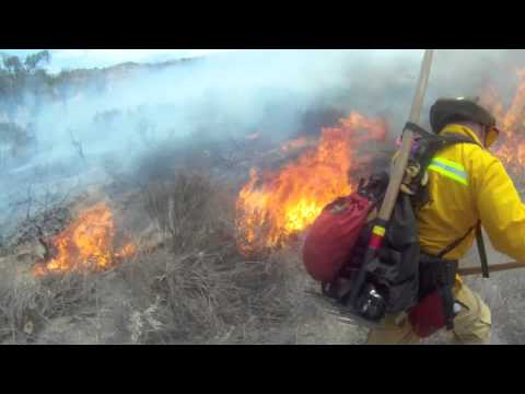 LACoFD Fire Suppression Aids