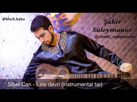 Şakir Süleymanov (Sibel Can - Lale Devri) Instrumental Tar