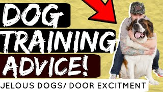Do dogs get jealous of other dogs? How to train my dog to stop going crazy at the door?