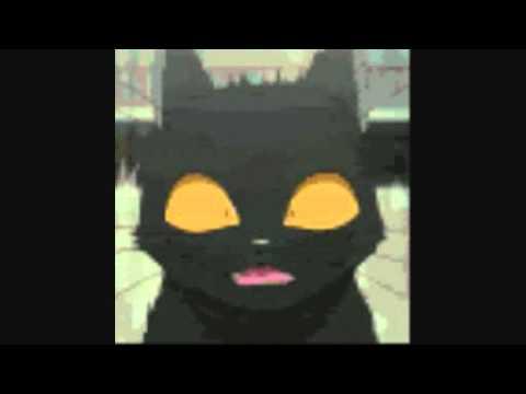 Yoruichi Meow Cat - YouTube