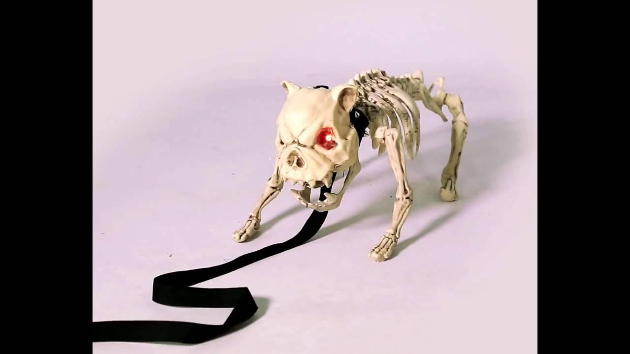 Esqueleto de perro con luz y sonido - YouTube
