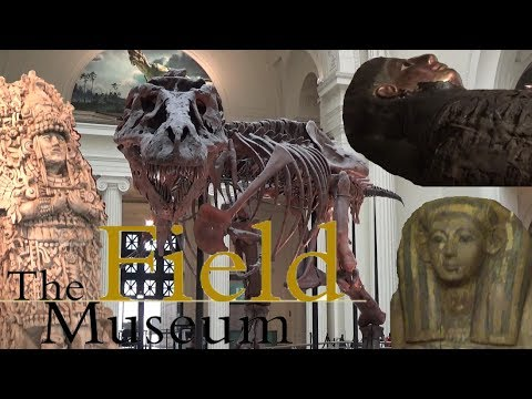 The Field Museum 2017 Tour & Review with The Legend