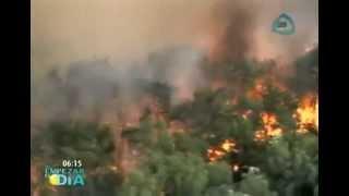 Se desata el infierno en los bosques de Jalisco