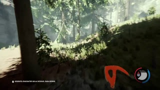 The Forest: P1 (PlayStation 4-LIVE)