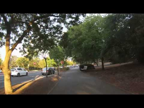 Stanford Campus Loop - Palo Alto Run Club (Winter run)