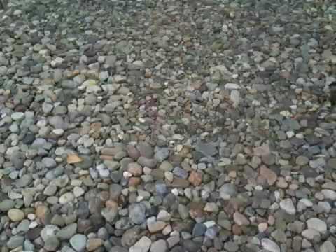 Stone Driveway Youtube