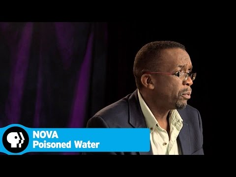 POISONED WATER on NOVA | Q&A with Scientists and Filmmakers | PBS