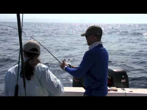 FISH FINDER COLUMBIA CUBERA 2  [ FISH FINDER ]