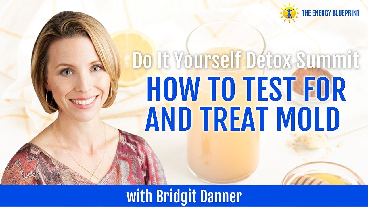 Do It Yourself Detox Summit How To Test For And Treat Mold With Bridgit Danner The Energy Blueprint