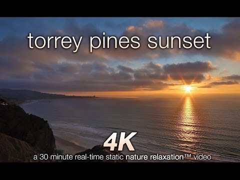 Torrey Pines Sunset 30 MIN 4K Nature Relaxation™ Video w Coastal Sounds